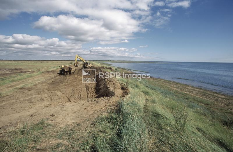 Freiston Shore RSPB reserve, breaching of former outer sea wall ...