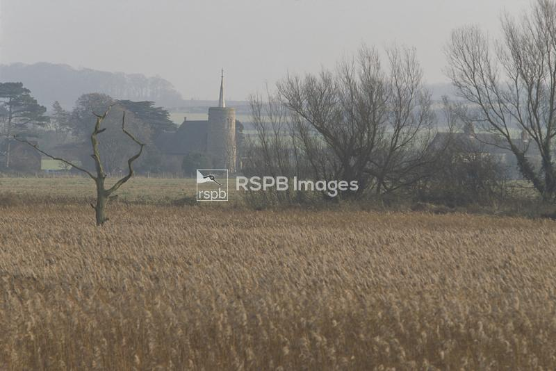 Titchwell RSPB reserve, view inland across reedbed, November 2002, ...