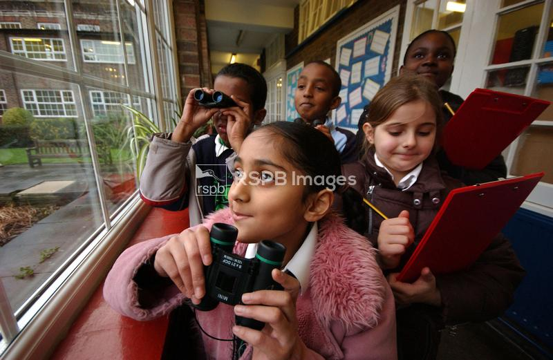 Children watching birds at school, RSPB Big Schools Birdwatch, January 2007 ...