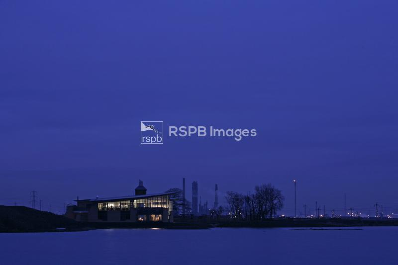 Saltholme RSPB reserve, near Middlesbrough. Tees Valley, England. January 2 ...