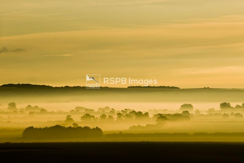 Dawn over Windmill Hill northwards towards the Marlborough Downs, Wiltshire ...