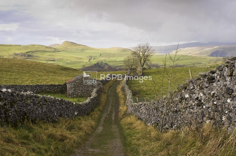 View from a a stone wall edged path near Stainsforth Falls in Yorkshire, No ...