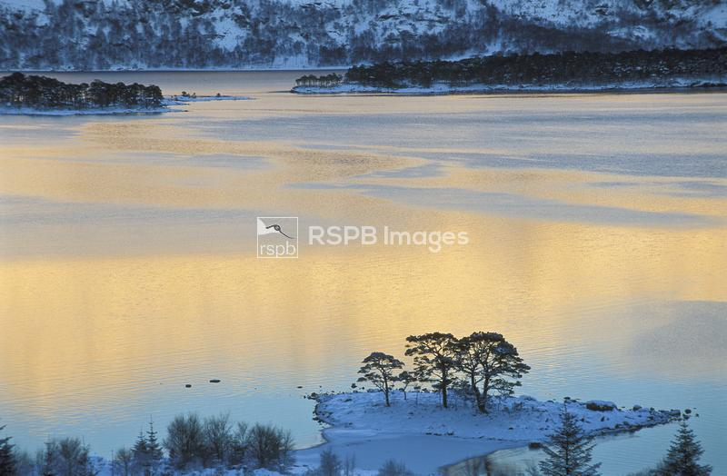 Evening light over Loch Maree, Beinn Eighe and Loch Maree Islands National  ...