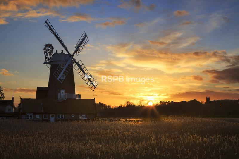 Cley windmill at sunset, Cley next the sea, Norfolk, England, January ...