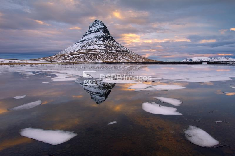 Kirkjufell mountain at dawn with ice in foreground, Snaefellsnes peninsula, ...