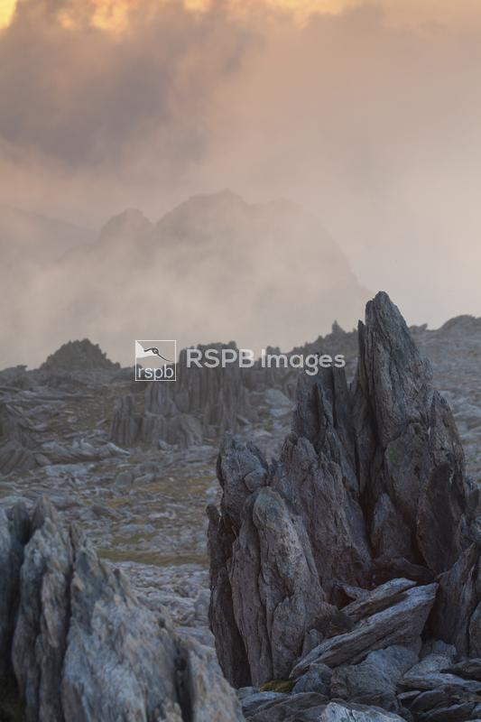 Frost shattered rocks on the summit of Glydereau at sunrise, Wales, May ...