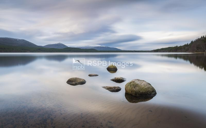 Loch Morlich, Cairngorms National Park, Scotland, February ...