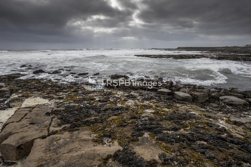 Moody skies and North Sea, Beadnell Bay and Seahouses harbour, Northumberla ...