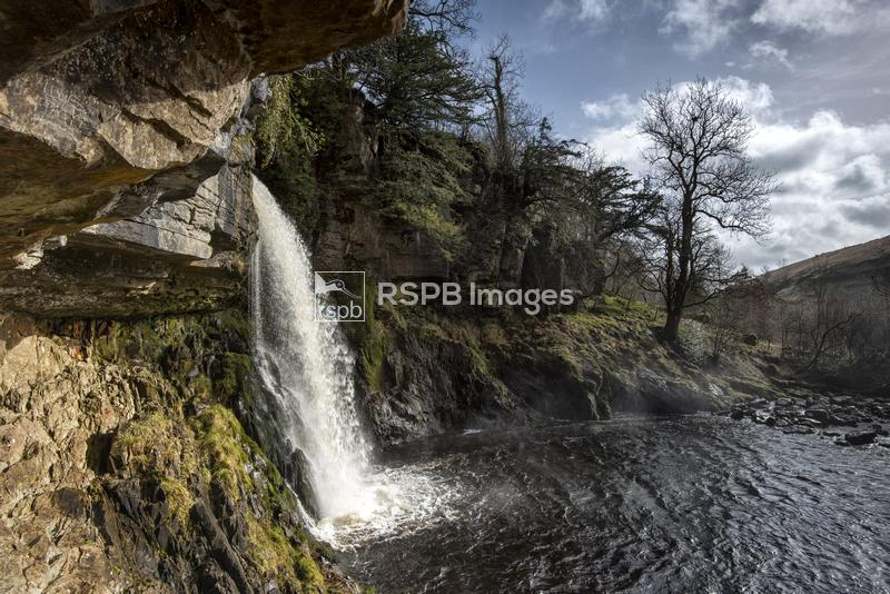 Thornton Force waterfall, River Twiss, Ingleton, Yorkshire, March ...
