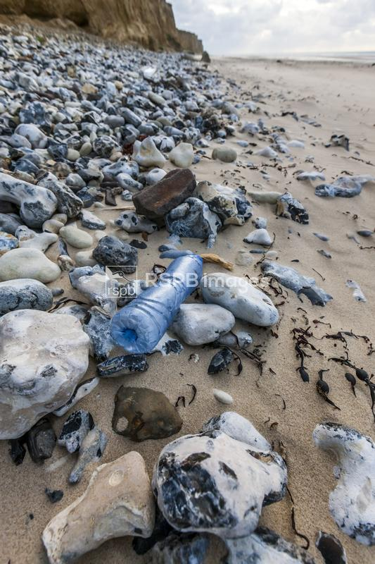 Plastic and other rubbish accumulated on the hide tide line on the English  ...