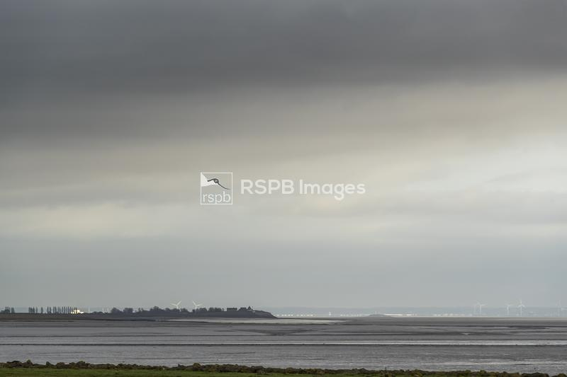 Wind turbines catch the sunlight at Newport and in the background, Portbury ...
