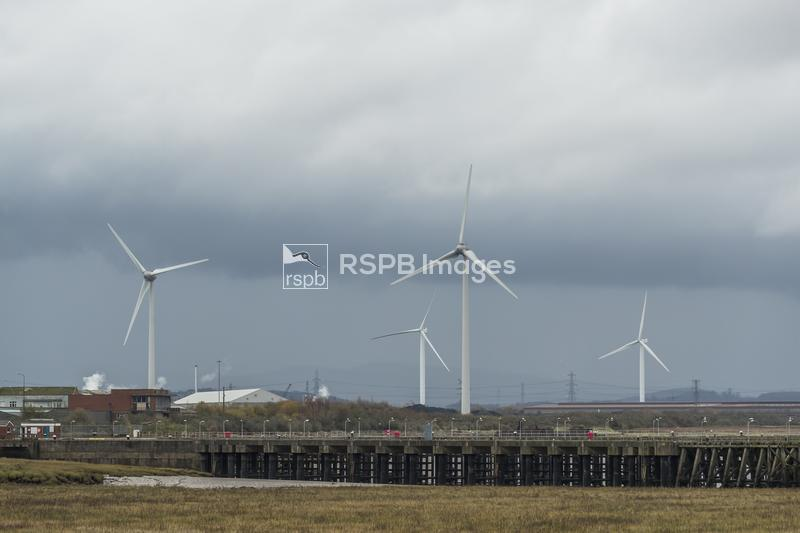 Wind turbines, Usk Docks, Newport, Bristol Channel and Gwent Levels, Wales, ...